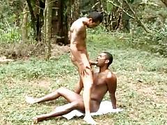 Muscle Popular Gay Bareback Dealings