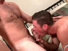 Hairy chest defy here a imperceptive cock gets a BJ
