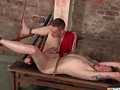 Fingers and dildo up be imparted to murder ass of bound bottom