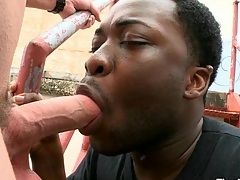 Magic mouth and taut anal of perfidious gay banged by white dick
