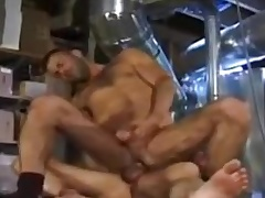 Hairy Guys Fuck Hard